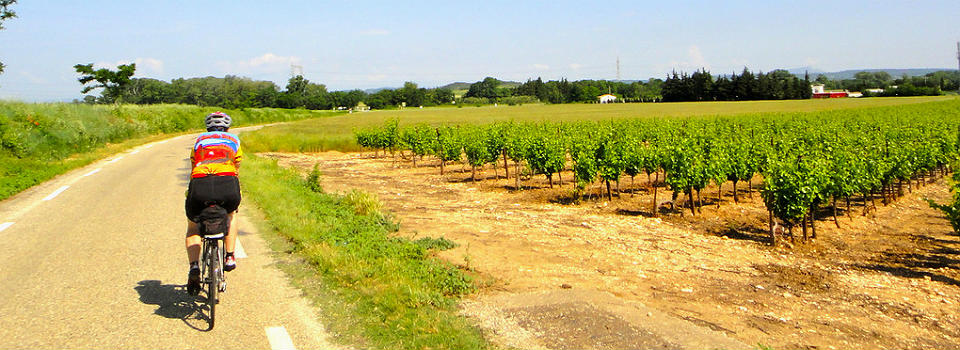 Cycling the Languedoc