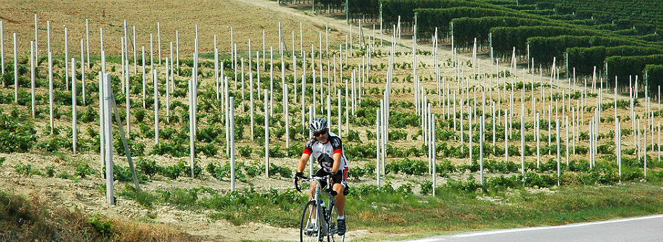Cycling Piemonte