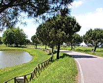 Riding along the Po Delta with ExperiencePlus! Bicycle Tours
