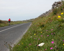 An ExperiencePlus! cyclists enjoys a small road in Ireland.