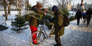 tree_shopping_bicycle
